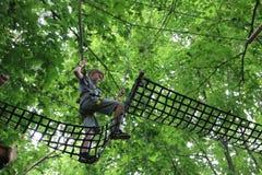 Treetopklättring royaltyfri bild