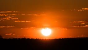 Заход солнца над деревьями и облаками видеоматериал