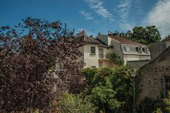 Treetops and roofs building under sunny blue sky at Montmartre in Paris. Stock Images