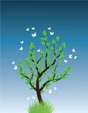 treevektor Royaltyfri Foto