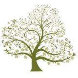 treevektor Royaltyfria Bilder