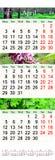 Trefaldig kalender för April Juni 2017 med naturliga bilder Royaltyfri Bild