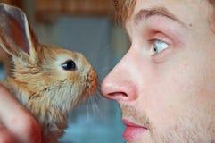 Treffen Sie das Kaninchen Lizenzfreie Stockfotos