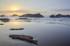 Treibhölzer auf einem schönen Strand belichtet durch die ersten Strahlen des Morgensonnenscheins Lizenzfreie Stockfotografie
