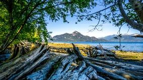Treibholz auf dem Strand von Porteau-Bucht auf Howe Sound mit Amboss-Insel im Hintergrund stockfotos