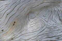 Treibholz auf einem Strand Stockfotos