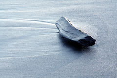 Treibholz auf einem Strand Stockfotografie