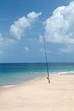 Treibholz auf tropischem Strand Lizenzfreie Stockbilder