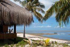 Treibholz auf tropischem Strand Stockfotografie