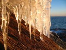 Treibholz und Eiszapfen Lizenzfreie Stockbilder