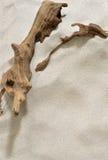 Treibholz-und Sand-Hintergrund Lizenzfreies Stockbild