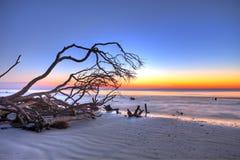 Treibholz und Sonnenaufgang hdr Lizenzfreie Stockfotos