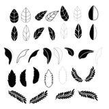 Treibt Ikonen für Muster mit weißem Hintergrund Blätter stock abbildung