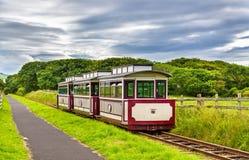 Trein bij de de Verhoogde weg van de Reus en Bushmills-Spoorweg, Noordelijk IRL Royalty-vrije Stock Fotografie