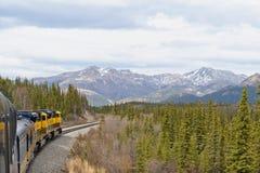 Trein in de wildernis Van Alaska royalty-vrije stock foto