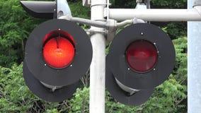 Trein die, Opvlammende Rode lichten, Spoorwegen kruisen stock video