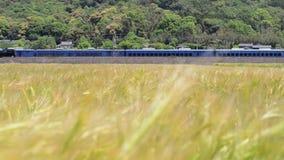 Trein die zich langs tarwegebied bewegen stock footage