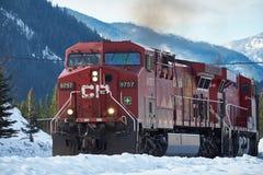 Trein met Canadese Rotsachtige Bergen in de winter Stock Afbeeldingen