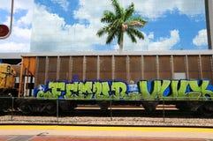 Trein met graffiti in Zuid-Florida stock foto's