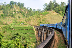 Trein op brug in heuvelland van Sri Lanka Stock Foto