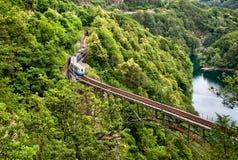 Trein op de Alpen Stock Foto