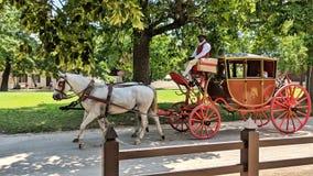 Treinador e carrinho coloniais de Williamsburg no dia ensolarado imagens de stock royalty free