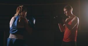 Treinador kickboxing do atleta da mulher de Kickboxer que treina os amigos fêmeas da aptidão que encaixotam a apreciação de perfu vídeos de arquivo