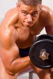Treinamento amador do bodybuilder Imagem de Stock