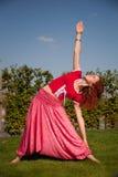 Treinamento ao ar livre da ioga Imagens de Stock Royalty Free