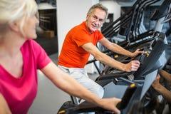 Treinamento contente do homem superior na bicicleta da rotação no gym fotografia de stock