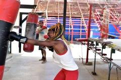 Treinamento cubano do pugilista em Havana, Cuba fotografia de stock royalty free