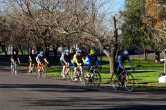 Treinamento da bicicleta foto de stock royalty free