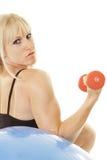 Treinamento da mulher com dunbells Fotografia de Stock