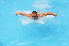 Treinamento da nadada fotografia de stock
