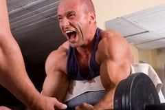 Treinamento do Bodybuilder Imagens de Stock