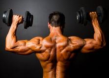 Treinamento do Bodybuilder fotografia de stock