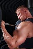 Treinamento do Bodybuilder na ginástica Imagens de Stock