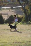 Treinamento do cão Fotografia de Stock