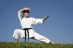 Treinamento do campeão do karaté - kata fotos de stock royalty free