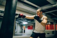 Treinamento do encaixotamento treinamento do ` s do campeão foto de stock royalty free