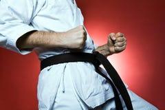 Treinamento do karaté, exercício na ginástica imagem de stock