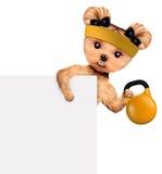 Treinamento engraçado do cão com kettlebell atrás da bandeira Imagens de Stock Royalty Free