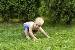 Treinamento exterior de Capoeira Criança surpreendente que mooving no estilo de Capoeira imagem de stock royalty free