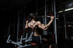 Treinamento muscular do halterofilista do atleta no gym foto de stock royalty free