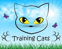 Treinar gatos representa o animal de estimação Kitty And Trainer ilustração do vetor