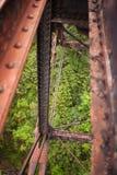 Treinbrug over een bos Royalty-vrije Stock Foto's