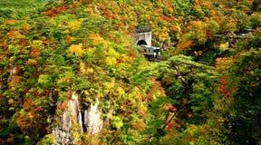 Treine com as folhas de outono coloridas no desfiladeiro de Naruko foto de stock