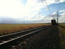 Treine a passagem perto na estrada de ferro no ajuste da natureza Fotografia de Stock