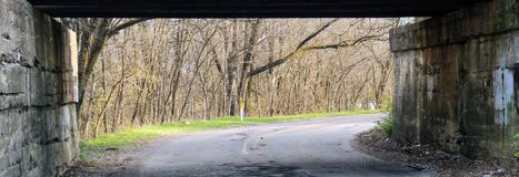 Treine a ponte sobre grafittis urbanos da estrada lateral, com fileira das árvores na mola adiantada em Indianapolis Indiana, Est Imagens de Stock
