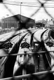 Treinen in een depot Stock Foto
